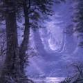 Mondschein im Neldoreth