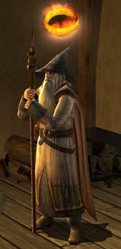 Gandalf der Graue in HdRO, © by Turbine